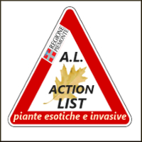 LOG invasive AL 200.jpg