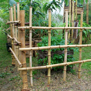 Recinzioni con canne di bambu pannelli termoisolanti for Canne di bambu per pergolati