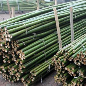 Canna di bambu 39 diam 04 06 cm for Canne di bambu per arredamento