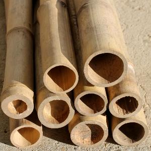 Canna di bambu 39 diam 08 10 cm for Vendita piante bambu gigante